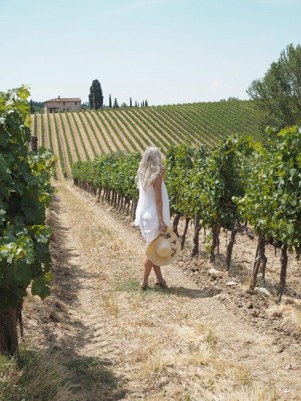 Vineyard in Tuscany – Ruffino Poggio Casciano